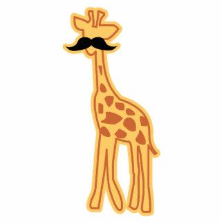 Cute giraffe with mustache Magnet/Sculpture Photo Sculpture Magnet