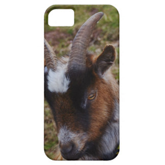 Cute Goat. iPhone 5 Case