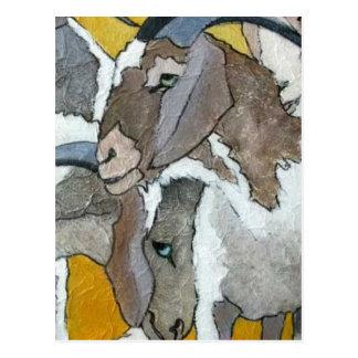 Cute Goats Cuddling Postcard