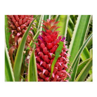 Cute gold dust day geckos on a pineapple postcard