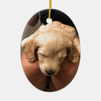 Cute Golden Doodle Retriever Sleeping Puppy Pup Ceramic Oval Decoration