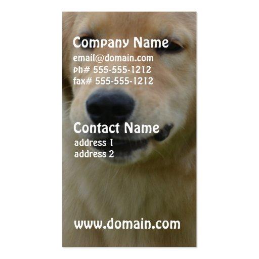 Cute Golden Retriever Puppy Business Card Template