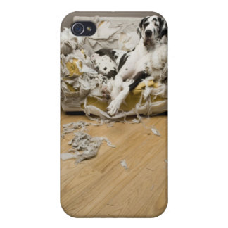 Cute Great Dane dog iPhone 4 case