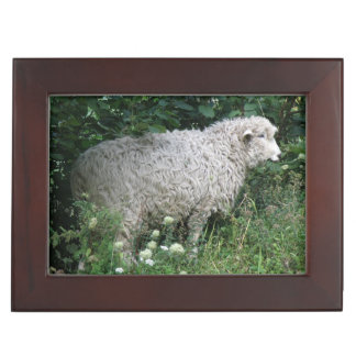 Cute Greedy Sheep Eating Keepsake Box