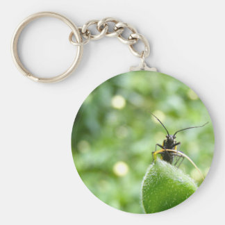 Cute Green Bug Key Chains