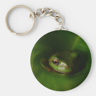 Cute Green Candid Frog Hiding In The Leaves Keychains