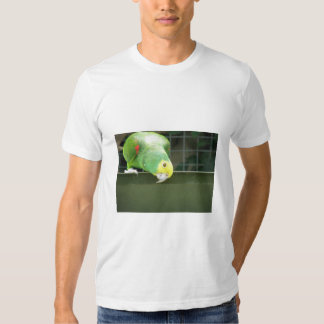 Cute Green Cheeky Parrot Watch Something By Loweri T Shirt