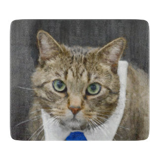 Cute green-eyed brown tabby cat wearing a blue tie cutting board