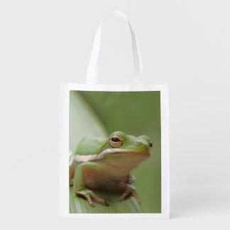 Cute Green Tree Frog Foldable Reusable Bag