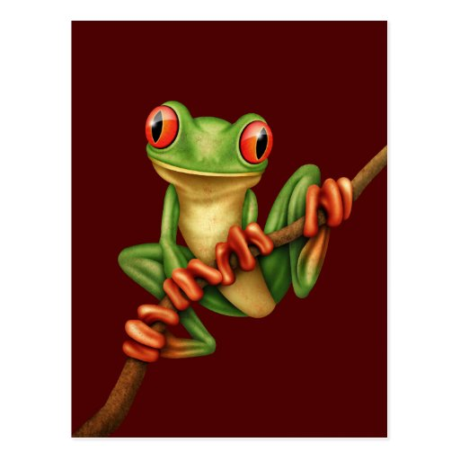 Cute Green Tree Frog on a Branch on Red Postcards