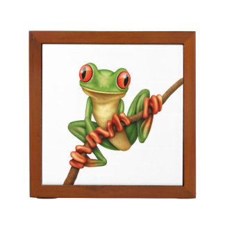 Cute Green Tree Frog on a Branch on White Desk Organiser