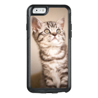 Cute Grey British Short Hair Kitten (Blue Tabby) OtterBox iPhone 6/6s Case