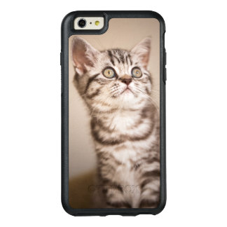 Cute Grey British Short Hair Kitten (Blue Tabby) OtterBox iPhone 6/6s Plus Case