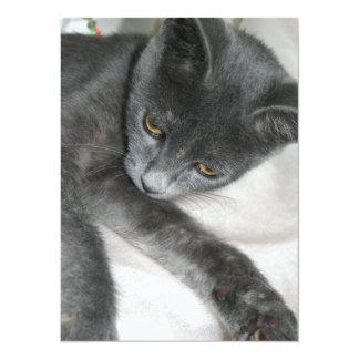 Cute Grey Kitten Relaxing 14 Cm X 19 Cm Invitation Card