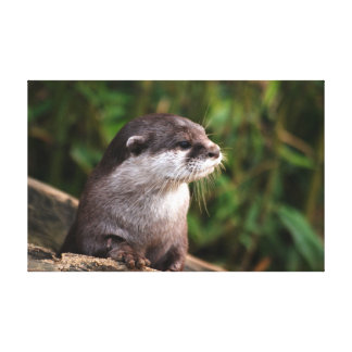 Cute grey otter gallery wrapped canvas