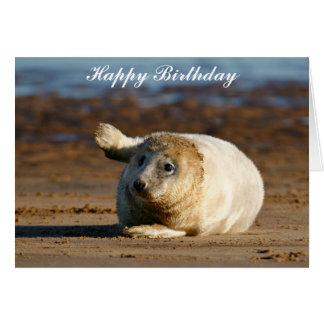 Cute Grey Seal Pup - Happy Birthday Greeting Card