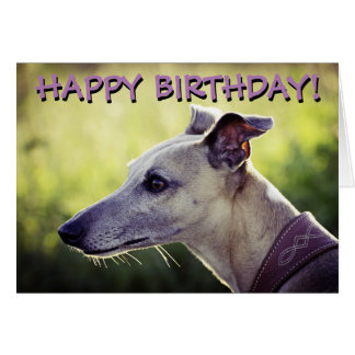 Cute greyhound customized greetings card