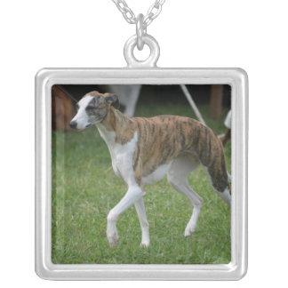 Cute Greyhound Jewelry