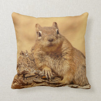 Squirrel Cushions - Squirrel Scatter Cushions Zazzle.co.uk
