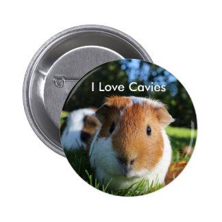 Cute Guinea Pig Cavy 6 Cm Round Badge