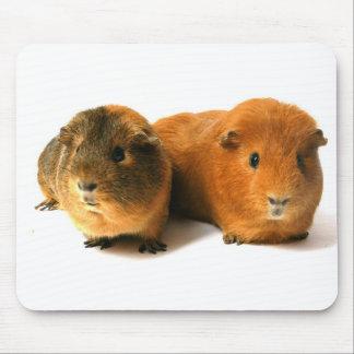 cute guinea pig mouse pad