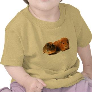 cute guinea pig tees