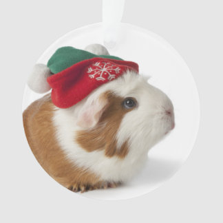 Cute Guinea Pig Christmas Tree Decorations & Ornaments | Zazzle.co.uk