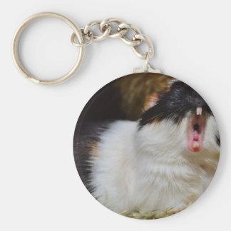 Cute Guineapig Yawning Basic Round Button Key Ring