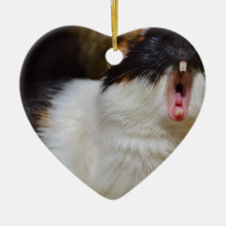 Cute Guineapig Yawning Christmas Ornament