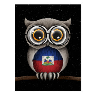 Cute Haitian Flag Owl Wearing Glasses Postcard