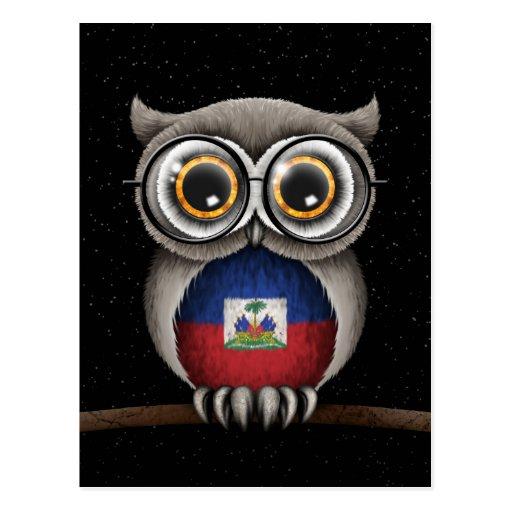 Cute Haitian Flag Owl Wearing Glasses Post Cards