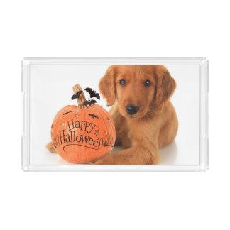 Cute Halloween Puppy With A Pumpkin Acrylic Tray