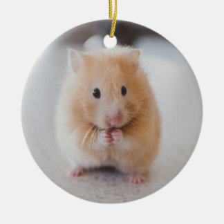 Cute hamster christmas ornament
