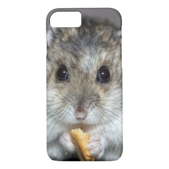 Cute Hamster Eating A Cookie iPhone 7 Case