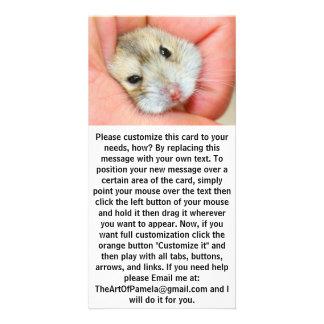 Cute Hamster Face 1 Custom Photo Card