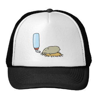 cute hamster with water bottle hat