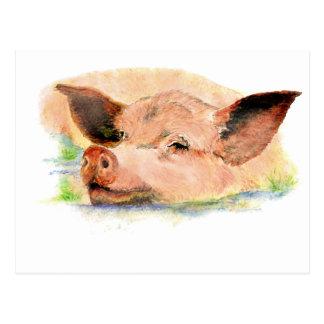 Cute Happy as a  Pig in Mud, Farm Animal, Humor Postcard
