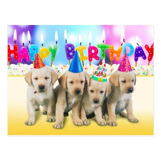 Cute Happy Birthday Puppies Postcard Zazzle Co Uk