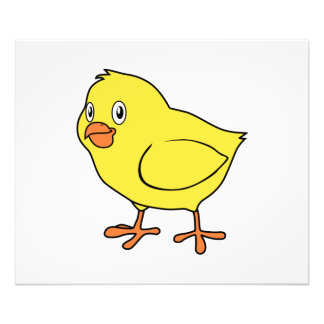 Cute Happy Yellow Chick Photograph