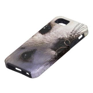 Cute Harp Seal Fantasy Art Wildlife iPhone 5 Case