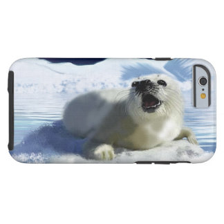 Cute Harp Seal & Ice Art for Wildlife Supporters Tough iPhone 6 Case