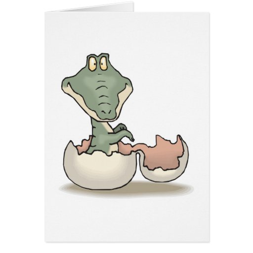 cute hatching baby alligator greeting card