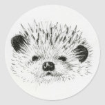 Cute Hedgehog drawing Classic Round Sticker