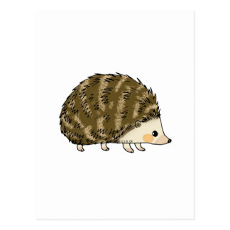 Cute hedgehog postcard