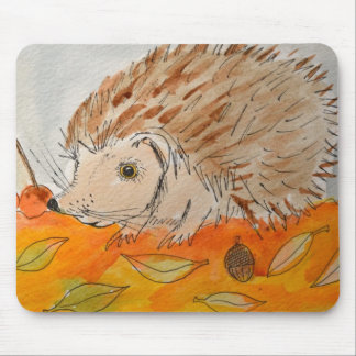 Cute Hedgehog watercolor Mousemats