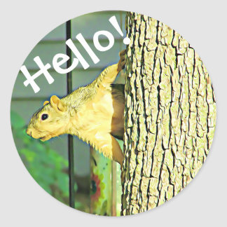 Cute Hello Silly Squirrel Stickers