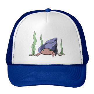 Cute hermit crab cap