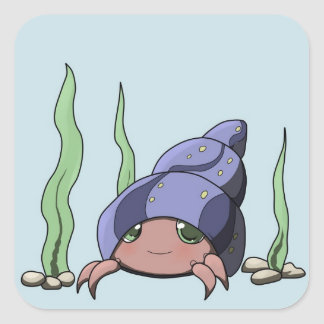 Cute hermit crab square sticker