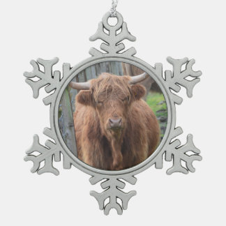Cute Highland Cow by Fence Pewter Snowflake Decoration