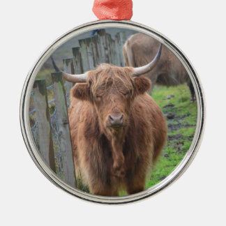 Cute Highland Cow by Fence Silver-Colored Round Decoration